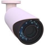 2MP-BUL-2.8-12M, внешняя WDR антивандальная IP66 FullHD IP камера (моторизированная)