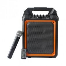 Clarity MAX6W Портативная акустическая система